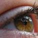 szép szem