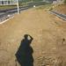IMG 4178 fotos es a hid