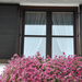 Erkély - ablak - ajtó - virág