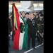 Gyűjtemény - magyar_tricolor