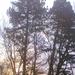 Didergős, ködös napkelte