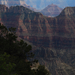 US 2010 Day23  083 North Rim, Grand Canyon NP, AZ