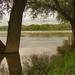 A Duna Százhalombattánál