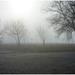 Ködben, a nappal szemben