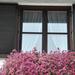 Ablak - ajtó - erkély -  virág