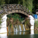 tájképek, őszi élet a híd alatt